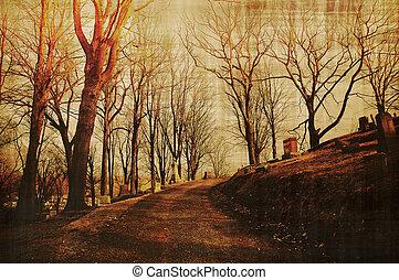 bosso, cimitero, pergamena