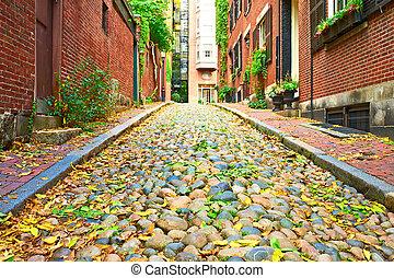 Boston, histórico, rua, bolota