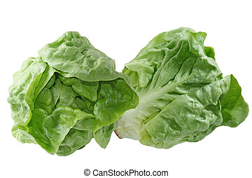 Boston Lettuce - Fresh boston lettuce isolated on white...