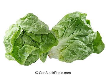 Boston Lettuce - Fresh boston lettuce isolated on white...