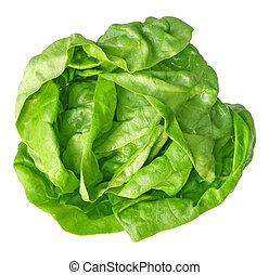 Single fresh boston lettuce isolated on white background