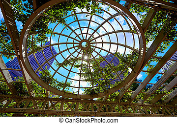 Boston skyscrapers from Norman Leventhal Park plants dome in...