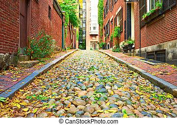 boston, storico, strada, ghianda