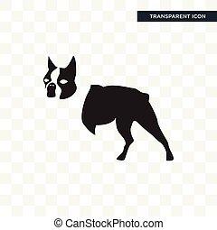 boston terrier vector icon isolated on transparent background, boston terrier logo design