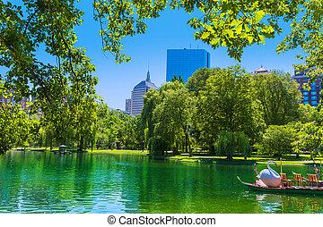 boston wspólny, jezioro, i, sylwetka na tle nieba, w, massachusetts