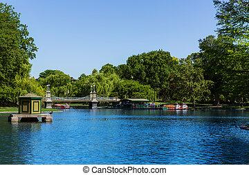 boston wspólny, publiczny ogród, jezioro, w, massachusetts