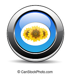 botón, flor
