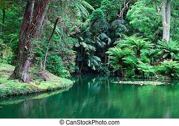 Beauty botanic garden of Azores