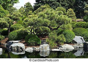 Botanic Garden - Japanese Garden with Small Pond.