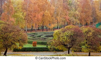Botanical garden - Autumn in the botanical garden. Kiev, ...
