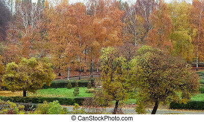 Botanical garden - Autumn in the botanical garden. Kiev,...