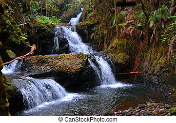 Unama Falls in the Hawaii National Botanical Garden on the Big Island of Hawaii is a hidden gem. Tier after Tier of water falls gently to the bottom and is surrounded by rainforest beauty.