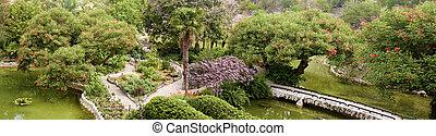 botanical garden in bloom