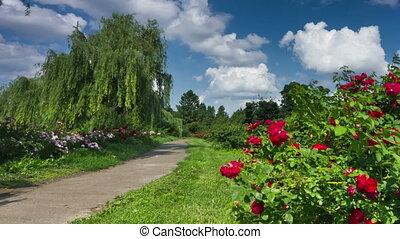 Kiev botanical garden. DSLR, RAW quality timelapse. Panning version