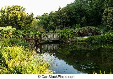 Botanical Garden Le Vallon du Stang Alar Brest France 27 may 2018 - small lake and bridge Summer season