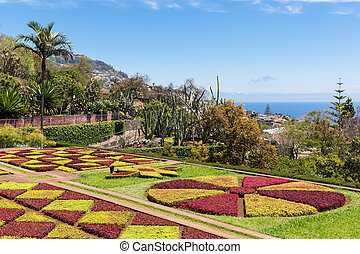 Botanical garden of Funchal at Portugese Madeira Island