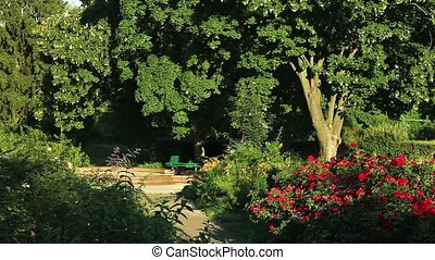 Botanical garden - Beautiful scene in a summer park. Kiev....