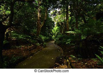 Botanical Gardens in Wellington New Zealand
