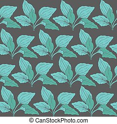 Botanical seamless pattern with green plantain leaves on dark background. Medicinal herbaceous plant hand drawn in vintage style. Vector illustration for fabric print, wrapping paper, wallpaper.