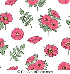 Botanical seamless pattern with pink dog rose flowers, stems and leaves hand drawn in antique style on white background. Natural vector illustration for wrapping paper, textile print, wallpaper.