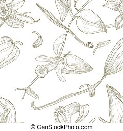 Botanical seamless pattern with vanilla, leaves, flowers, fruits or pods hand drawn with contour lines on white background. Natural vector illustration in antique style for fabric print, wallpaper.