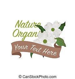 botanico, giardino fiore, colorito, natura, cornus, florida, struttura, acquarello, vettore, dogwood, bianco, bandiera