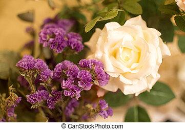 botanika, február, madrid., valentine's, csokor, rózsa, 14th., rétegfelhő, nyomasztó, ibolya, spain., fehér, nap