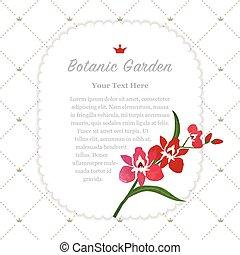 botanische tuin, kleurrijke, natuur, memorandum, textuur, watercolor, vector, frame, rood, orchidee