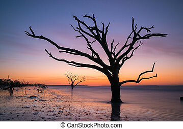 Botany Bay Beach at sunrise in South Carolina