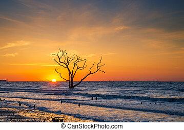 Botany Bay beach sunrise