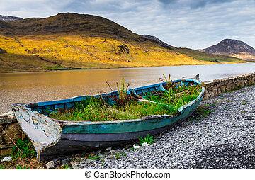 bote de remos, overgrown, kylemore, lough, orilla