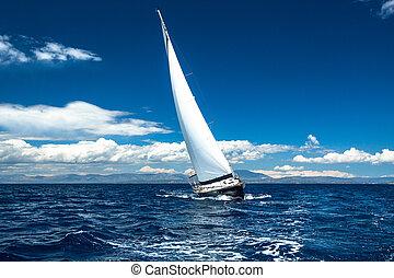 bote, em, velejando, regatta.