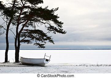 bote, inverno, descanso
