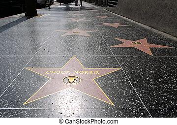 bote, norris', estrella, en, hollywood, caminata de la fama
