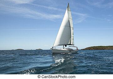 bote, velejando, regatta.