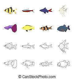 Botia, clown, piranha, cichlid, hummingbird, guppy, Fish set collection icons in cartoon, outline style bitmap symbol stock illustration web.