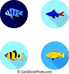 Botia, clown, piranha, cichlid, hummingbird, guppy,Fish set...