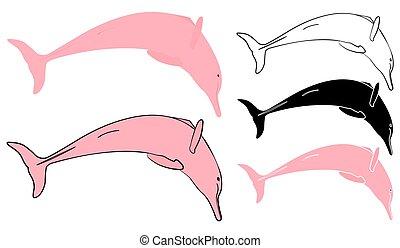 Boto cor de rosa in front view. Vector art.