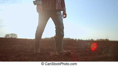 bottes, suivre, marche, petit, sec, tournesol, lent, motion., jambes haut, mâle, pieds, fin, agriculteurs, marcher, vert, meadow., vue, homme, bas, par, sol, jeune, field., angle, pousses