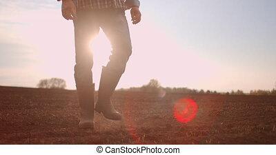 bottes, suivre, marche, petit, sec, tournesol, lent, motion., jambes, pré, mâle, pieds, agriculteurs, vue, vert, marcher, homme, bas, par, sol, jeune, angle, field., pousses