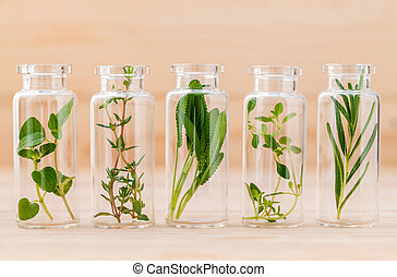 Bottle of essential oil lemon thyme ,thyme ,oregano, rosemary and sage leaf on wooden background.
