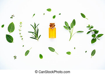 Bottle of essential oil with fresh herbal sage
