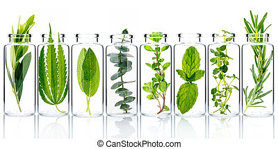 Bottle of essential oil with fresh herbs isolate on white background.