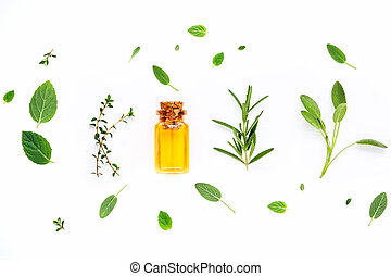Bottle of essential oil with fresh herbals