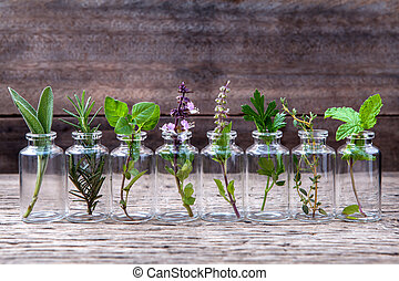 Bottle of essential oil with herbs holy basil flower, basil flower,rosemary,oregano, sage,parsley ,thyme and mint set up on old wooden background .
