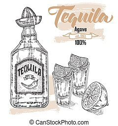 Bottle of tequila drink. Hand drawn two glasses of tequila. ...