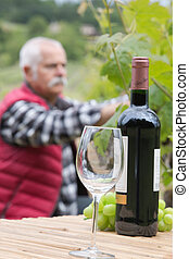 Bottle of wine and glass, man picking grapes in background