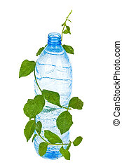 Bottle with water drink and foliage