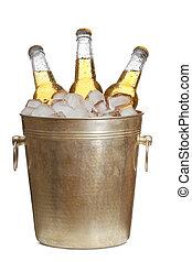 Bottles of beer are in ice bucket