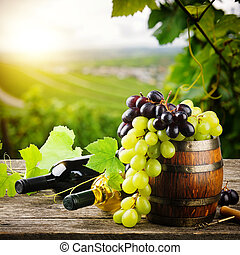 Bottles of red and white wine with fresh grape on vineyard background